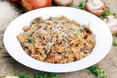 Risotto mushrooms with parmesan cheese, fresh herbs, rice, onion. Royalty Free Stock Image