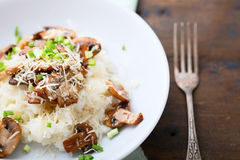 Risotto with mushrooms on plate. Traditional Italian food Royalty Free Stock Photos