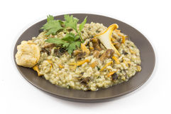 Risotto with mushrooms. A plate of risotto with mushrooms on white background Stock Photography