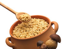 Risotto with mushrooms Royalty Free Stock Photos