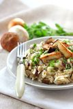 Risotto with mushrooms Royalty Free Stock Image