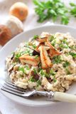 Risotto with mushrooms Royalty Free Stock Photo