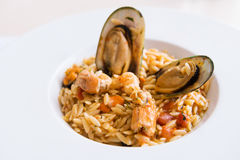 Risotto with mussels and shrimps Stock Image