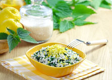 Risotto with nettles and lemon Stock Photo