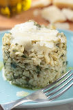 Risotto with Parmesan Royalty Free Stock Photography