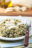 Risotto with Parmesan Royalty Free Stock Image
