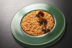 Risotto parmigiano on a tabletop Stock Photography
