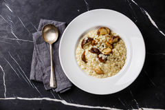 Risotto with porcini mushroom Stock Photography