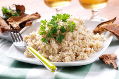 Risotto with porcini mushrooms Royalty Free Stock Images