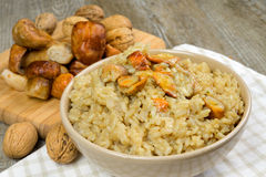 Risotto with porcini mushrooms Royalty Free Stock Image