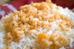 Risotto with prawn tails Royalty Free Stock Photos