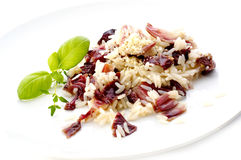 Risotto with red cabbage Royalty Free Stock Images