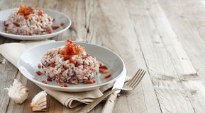 Risotto with red radicchio and crispy bacon speck. Close up royalty free stock photos