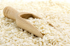 Risotto rice. Backdrop of risotto rice with wooden scoop Stock Image
