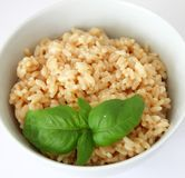 Risotto rice with cheese Royalty Free Stock Photo
