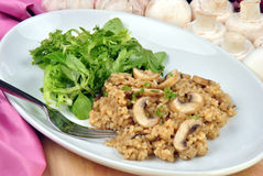 risotto rice with mushroom and salad Royalty Free Stock Photos