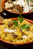 Risotto with saffron and mushrooms Royalty Free Stock Image