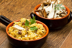 Risotto with saffron and mushrooms Royalty Free Stock Images