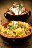 Risotto with saffron and mushrooms Stock Photography