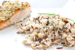 Risotto with salmon Royalty Free Stock Images