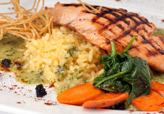 Risotto and Salmon Stock Images