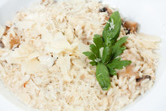 Risotto with sauce and fried mushrooms Stock Photos