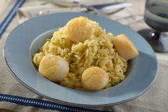 Risotto with scallops Royalty Free Stock Images