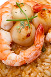 Risotto with seafood sauce Stock Photos