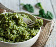 Risotto with spinach cream Royalty Free Stock Photography