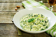Risotto with spinach Stock Image