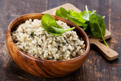 Risotto with spinach Royalty Free Stock Photography