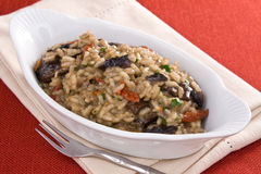 Risotto With Tomatoes and Mushrooms Royalty Free Stock Images