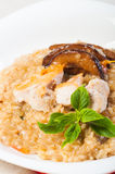 Chicken mushroom risotto Royalty Free Stock Photography