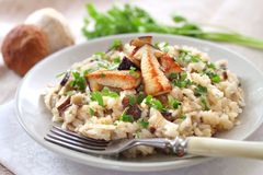 Risotto with white mushrooms Royalty Free Stock Image