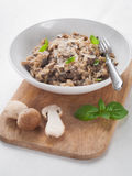 Risotto with wild mushrooms Royalty Free Stock Images