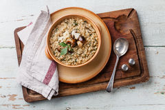 Risotto with wild mushrooms. With parsley and parmesan Stock Photography