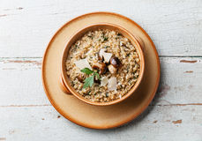 Risotto with wild mushrooms royalty free stock image