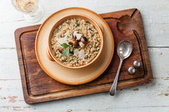 Risotto with wild mushrooms Stock Photos