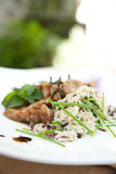 Risotto z wieprzowiny piec na grillu mięsem Obraz Stock