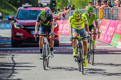 Risoul, France May 27, 2016; A group of professional cyclist exhausted with Rigoberto Uran and Alejandro Valverde passes the finis Stock Photo