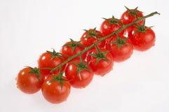 Risp tomatoes - Rispentomaten. Row of risp tomatoes on white background - Rispentomatenreihe auf weissem Hintergrund Royalty Free Stock Photography