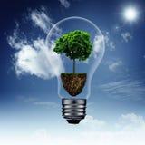 Risparmi di energia ed ambiti di provenienza di eco Fotografie Stock Libere da Diritti