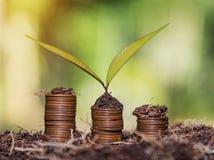 Risparmi i soldi e spieghi concetto di affari di finanza della crescita di attività bancarie fotografia stock libera da diritti