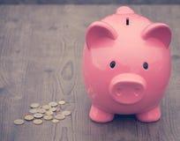 Risparmio/concetto di /money del porcellino salvadanaio di crescita Fotografia Stock Libera da Diritti