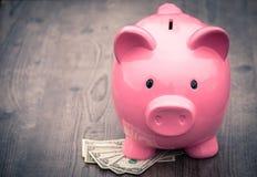 Risparmio/concetto di /money del porcellino salvadanaio di crescita Fotografie Stock Libere da Diritti