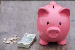 Risparmio/concetto di /money del porcellino salvadanaio di crescita Fotografia Stock