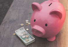 Risparmio/concetto di /money del porcellino salvadanaio di crescita Fotografie Stock
