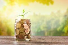 Risparmio ed investimento Fotografia Stock Libera da Diritti