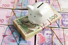 Risparmio in hryvnia e nel sistema ucraino della banca Porcellino salvadanaio e UAH immagini stock libere da diritti