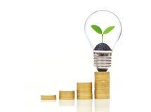 Risparmio verde Fotografia Stock Libera da Diritti